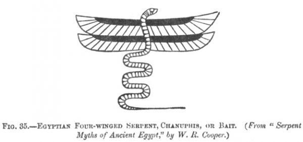14. Egipto ketursparnis Serpentinas