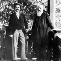 Johann Strauss II and Johannes Brahms